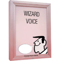Wizard Voice - Illuminated